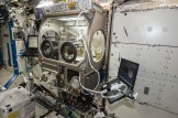 The Microgravity Science Glovebox resides in the Columbus module on the space station.