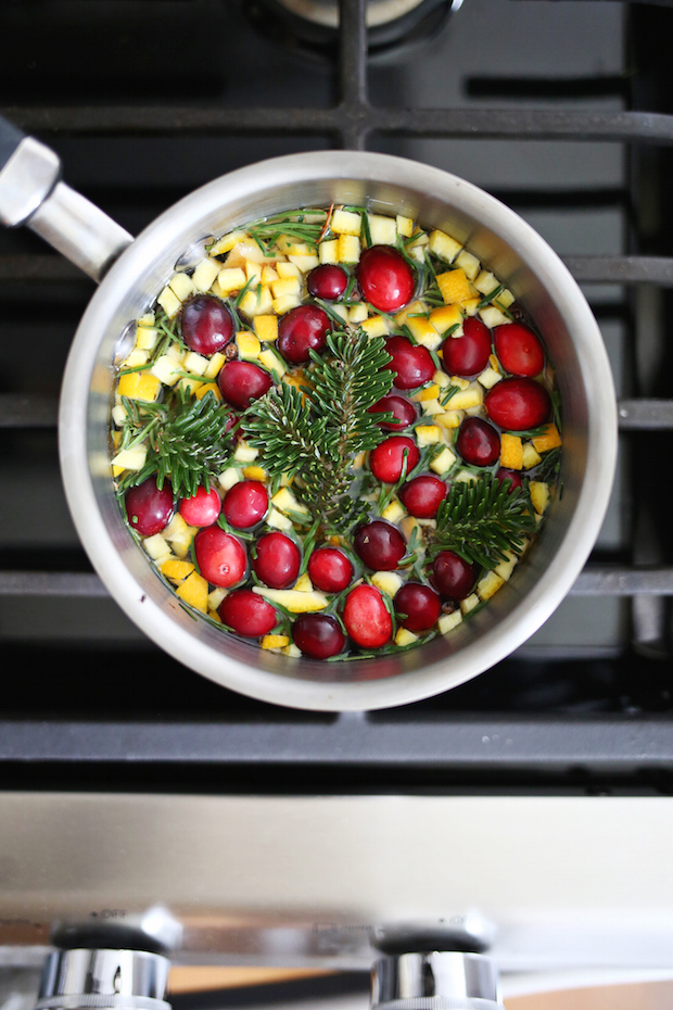 How-To: Evergreen and Cinnamon Stove Simmer