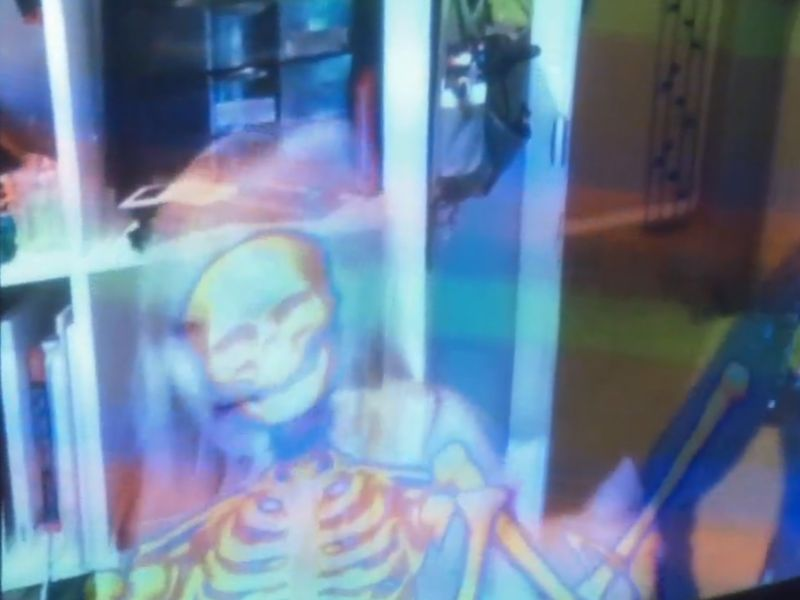 See Your Insides Animated Via Kinect with <em>Your Anatomy</em>