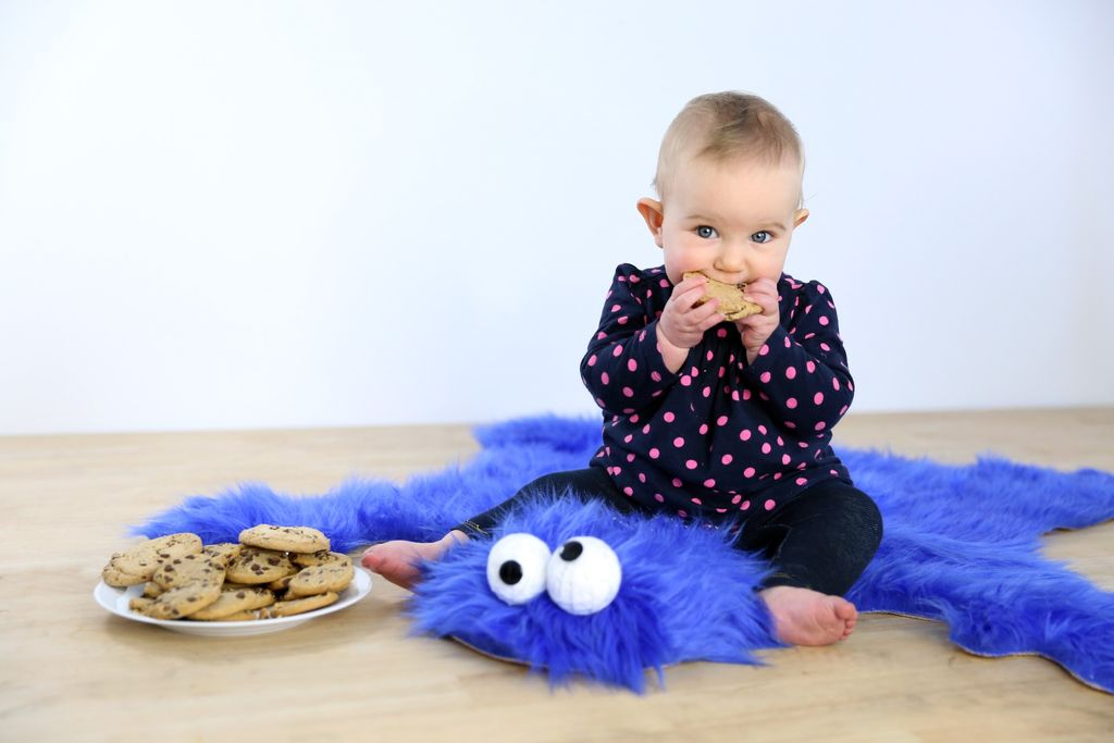 DIY Cookie Monster Rug