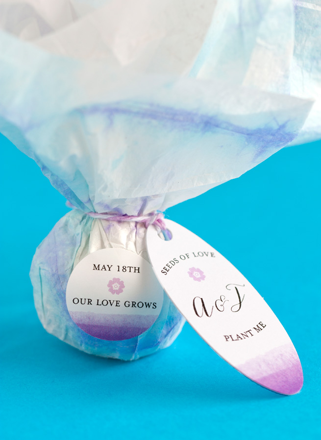 Diy Seed Bomb Party Favors Make