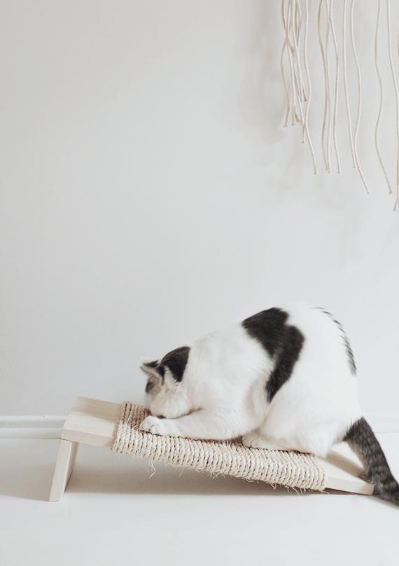 Modern Cat: Simple DIY Cat Scratcher