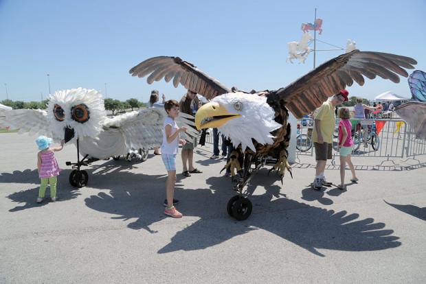 ammf austin bike zoo eagle owl