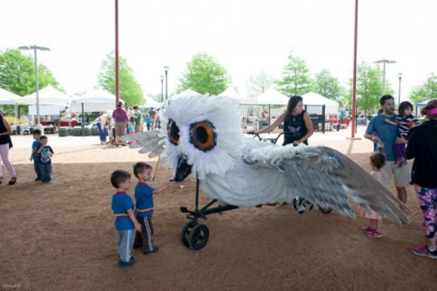 ammf bike zoo owl