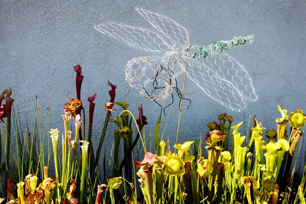 Make a Chicken Wire Dragonfly Decoration for Your Garden