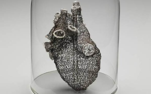 Artist Crochets Anatomically Correct Heart from Wire