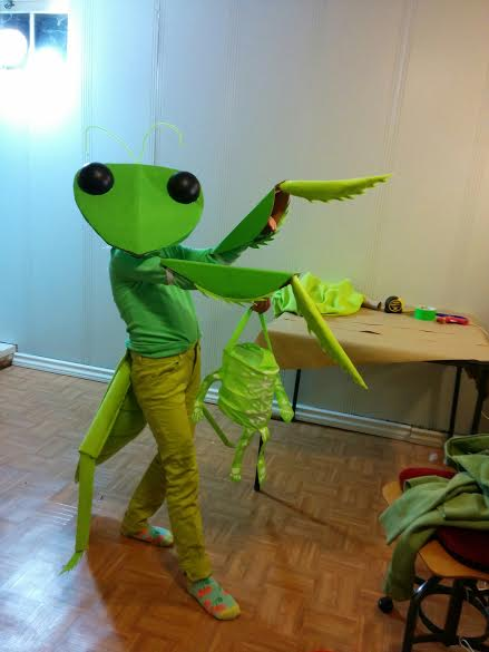 Praying mantis costume for sale