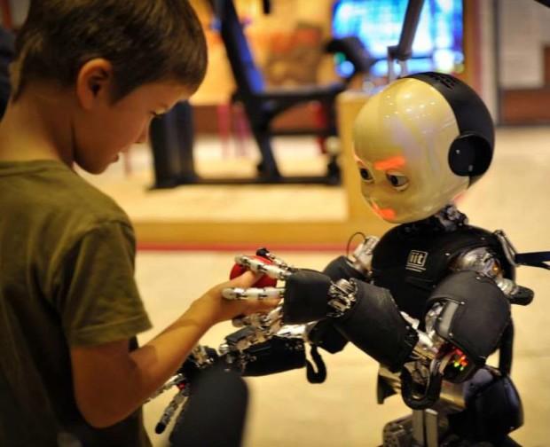 mfr little bot