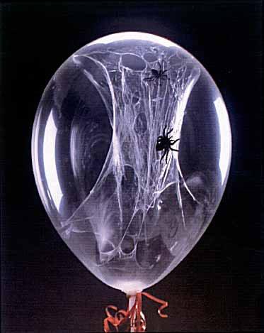 spider_balloon_halloween