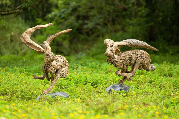 Hare in a Tight Turn and Hare in the Wind