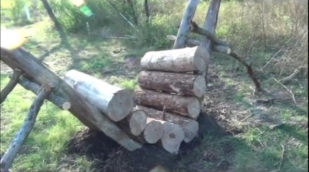 How to Build a Self-Feeding Campfire
