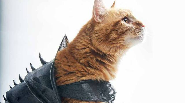 Yes, Your Cat Absolutely Needs 3D Printed Battle Armor