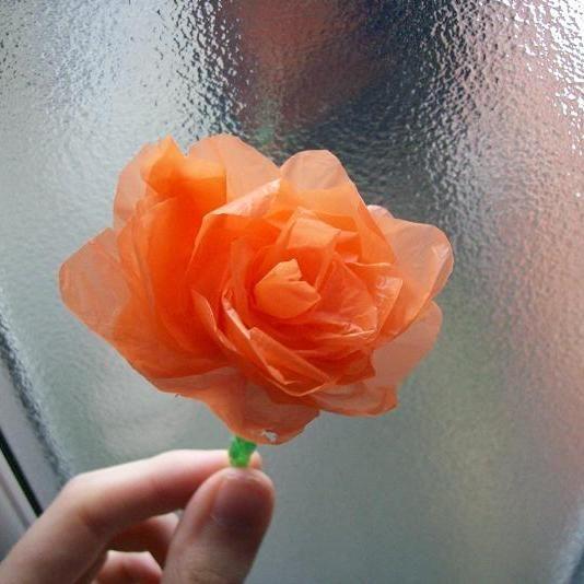 bag-flowers