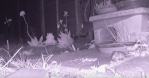 Spy on Garden Critters with Raspberry Pi-Powered Night Vision