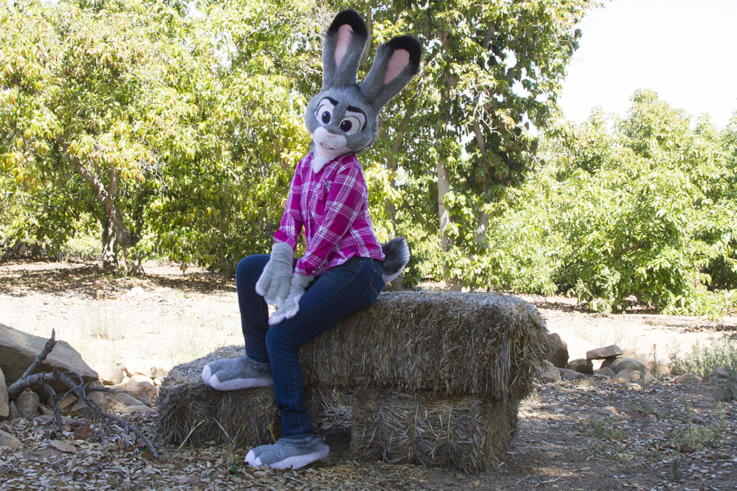This Amazing Zootopia Costume Was Made in Under 3 Weeks