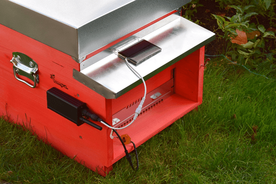 Edible Innovations: This IoT System Gives Diagnostics for Your Beehive
