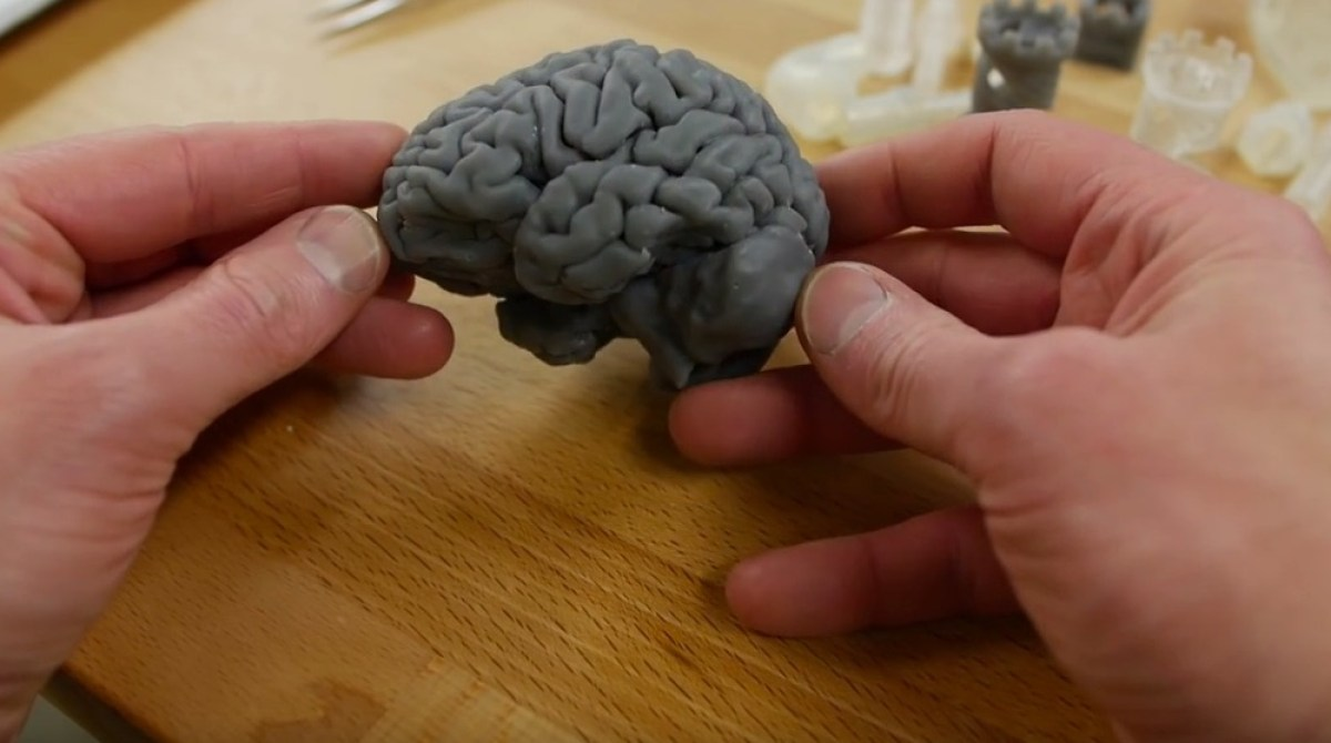 3D Print Your Own Brain!