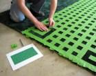 Hedge Maze Area Rug