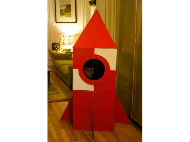 Cardboard Cat Rocket