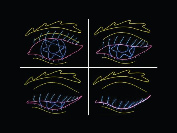 Annie's Blinking El Wire Eye