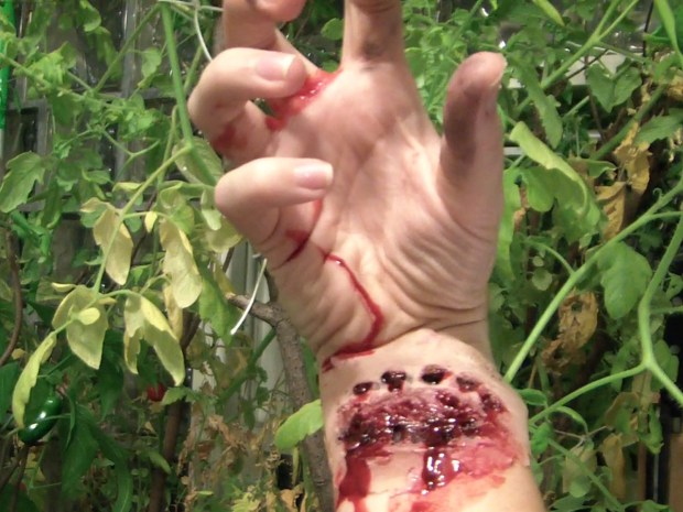 Zombie Horror Wounds