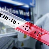 コロナ抗体検査の試験管のイラスト
