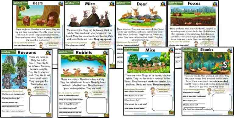 Reading and Writing Comprehension Cards – Forest Animals – Kindergarten and Young Learners