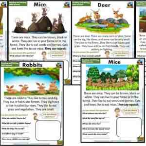 FREE guided reading worksheets and readers Forest animals