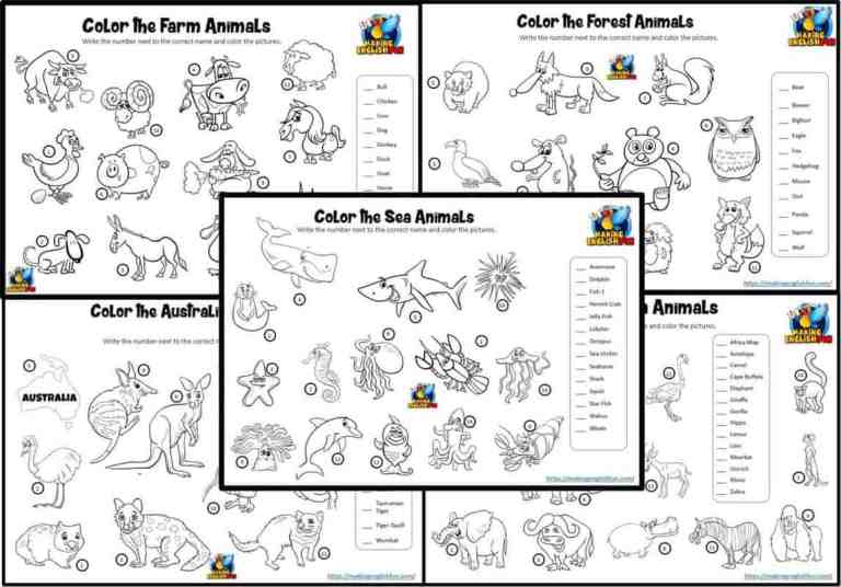 Animals Match and Color Worksheets