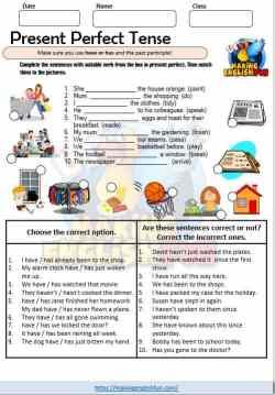 Present perfect Tense Worksheet