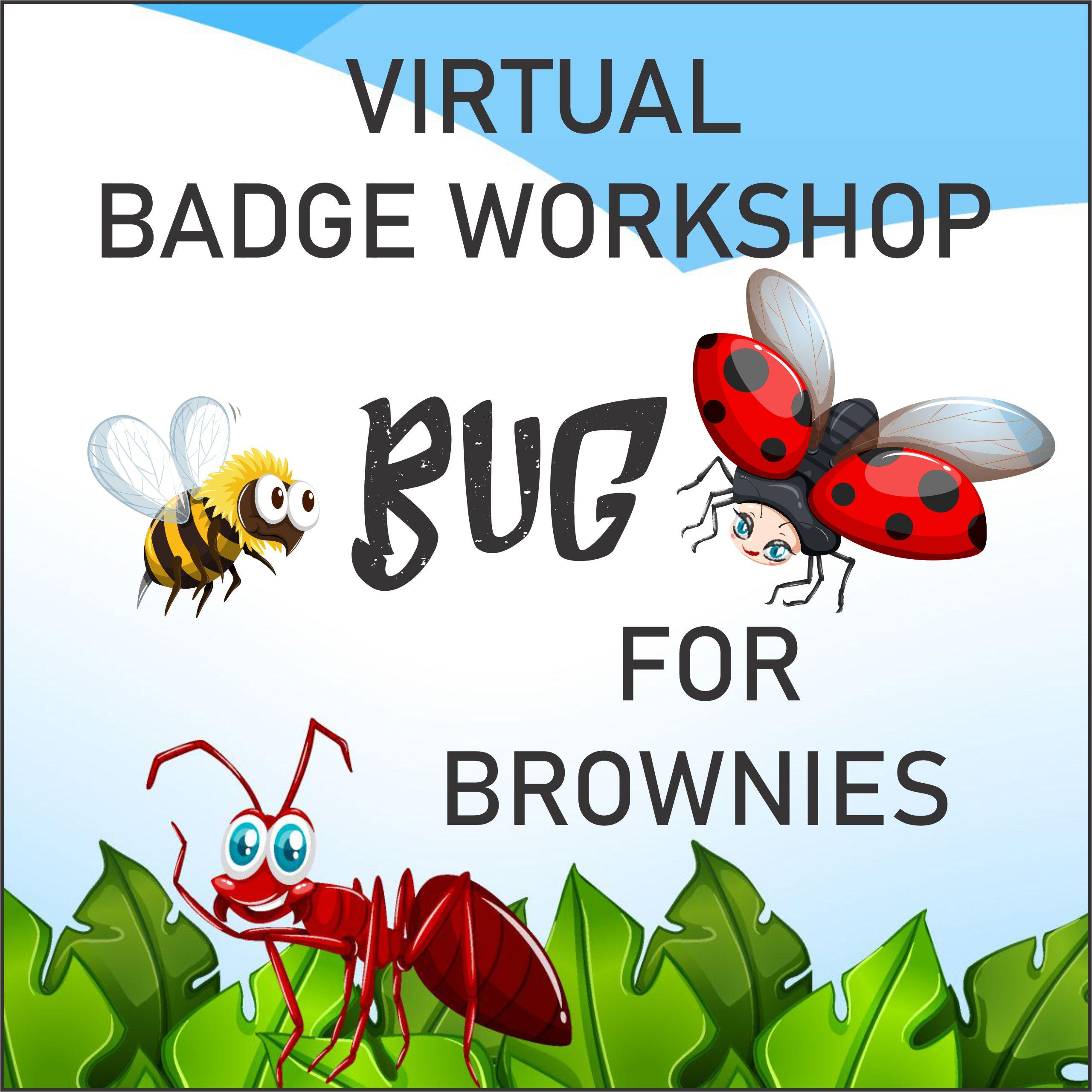 Girl Scout Virtual Bug Workshop for Brownies