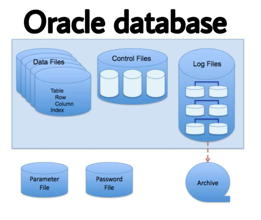 oracle database in hindi