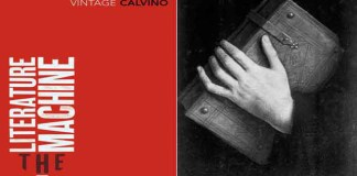 the literature machine italo calvino Vintage Classics book review