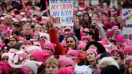 Pussyhat.crowd.fab