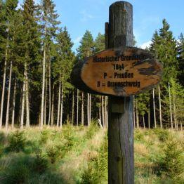 Zwischen Allrode und Friedrichsbrunn
