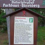über den Teufelsstieg von Schierke zum Brocken hinauf!