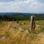Zwischen der Wolfsklippe und der Plessenburg, Brockengebiet