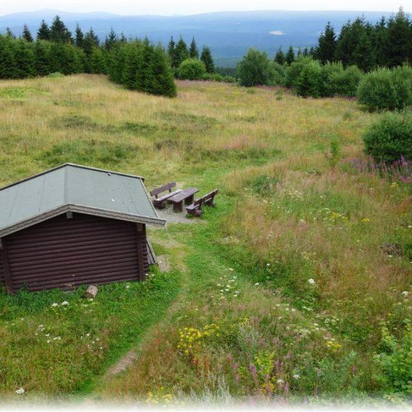 Harzer Wanderkaiserin Sommerurlaub 2016