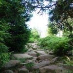 Ein Weg zur Leistenklippe