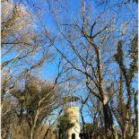 Der Austbergturm bei Benzigerode