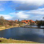 Fischteiche Kloster Michaelstein