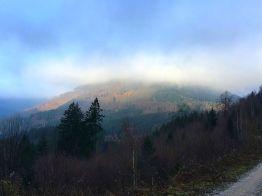 """mystische Winterstimmung am 01.01.2017 - mein erster Stempel des Jahres war die Nummer 106, der """"Bielstein"""", oberhalb von Lautenthal"""
