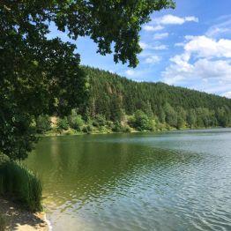 Die traumhaft schöne Wippertalsperre im Ostharz! Ruhe, Vogelgezwitscher und BADEN satt! Hier darf geschwommen werden, was der Ostharzer gerne auch nackig tut.