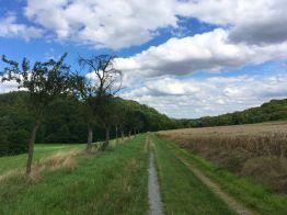 Unterwegs zum Clusberg bei Stangerode