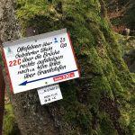 Weiter geht's Richtung Ottofelsen über glitschiges Felsgestein!