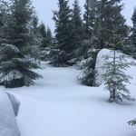 Unberührter, tiefer Schnee ohne jede Spuren