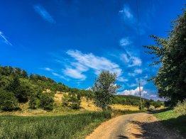 """Gleißende Hitze auf dem Weg zur """"schönen Aussicht Hainrode"""""""