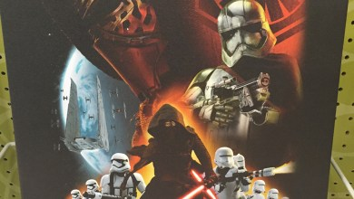 Photo of Star Wars: The Force Awakens wall canvas found!