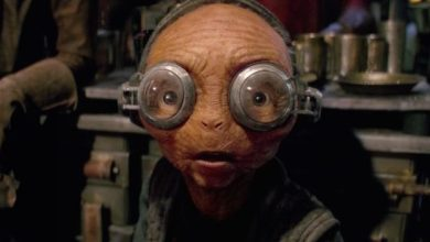 What role does Maz Kanata play in The Last Jedi?