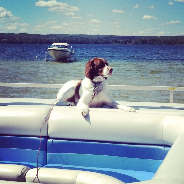 Ivy on a 'better day' keeping the lake safe